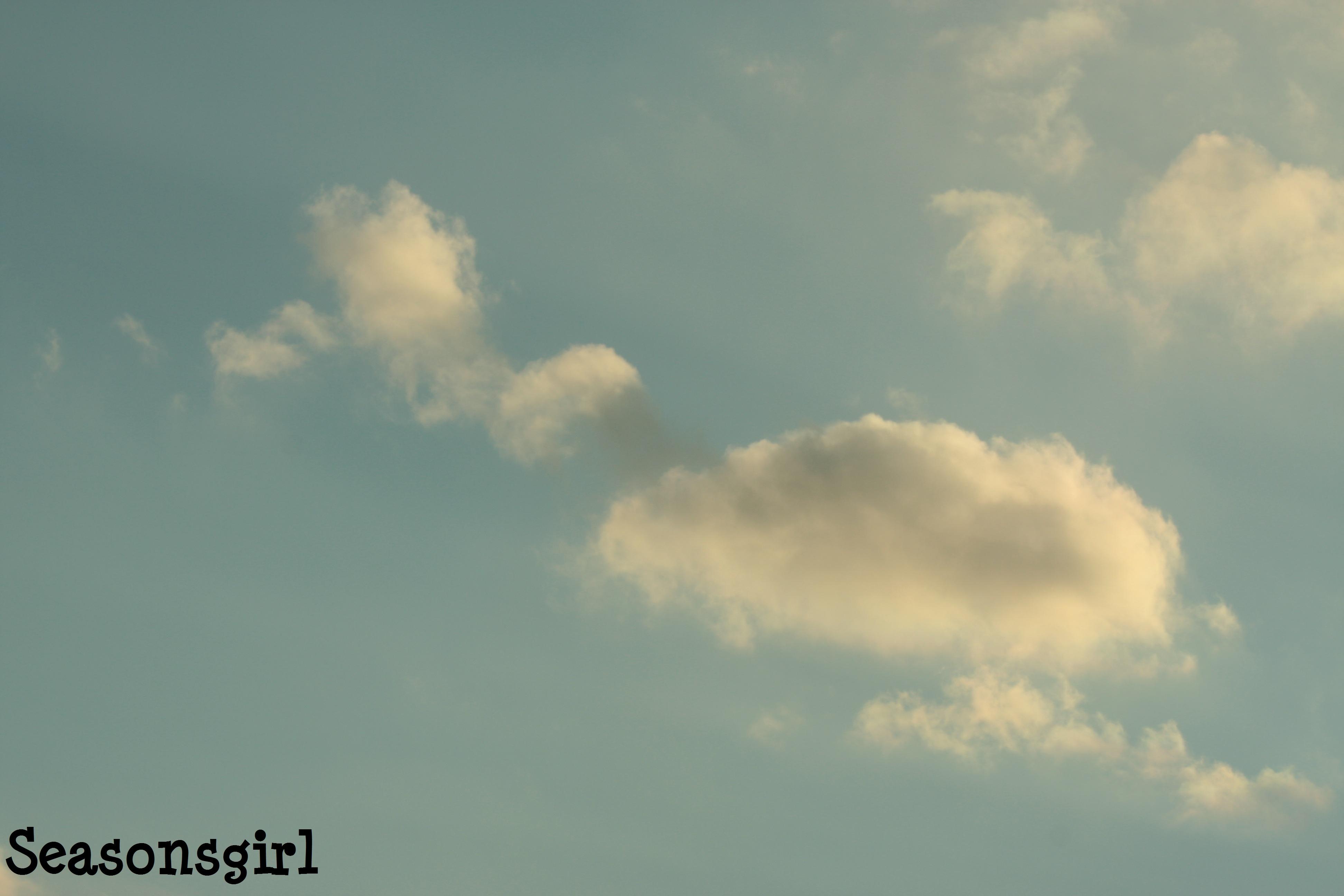 Duck Cloud