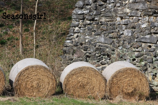 hay n wall