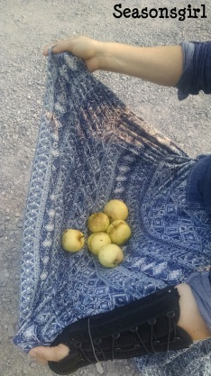 Apples in skirt