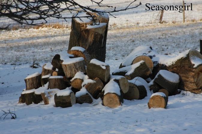 snow-logs